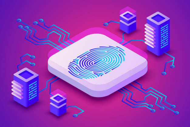 Data and Fingerprint