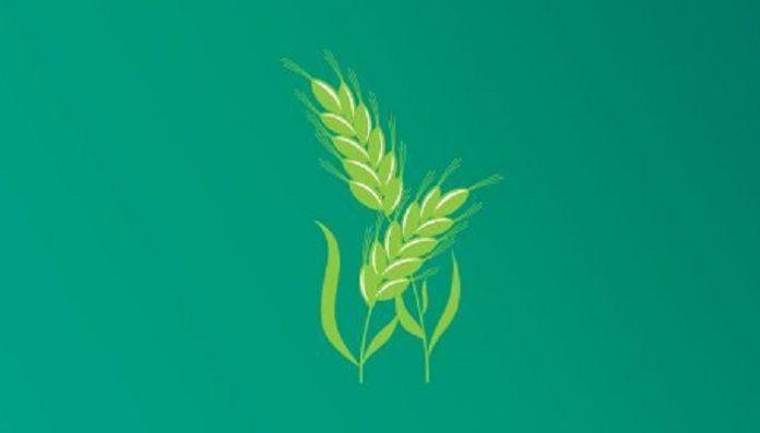 Agritech illustration