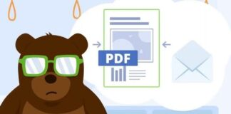 PDF Bear