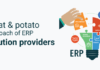 'Meat and Potato' Approach of ERP Solution Providers