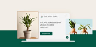 Small business website illustration for nursery plants business